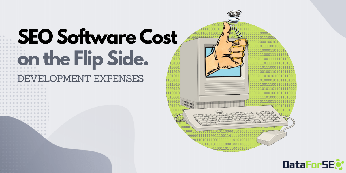 SEO Software Development Expenses