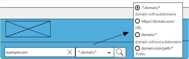 domain-input